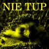 lib hedgehog 5 PL.png