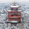 japoński zamek.jpg